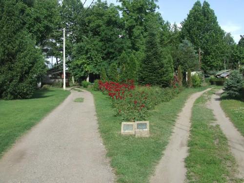 Kamp kao odraz Srbije…