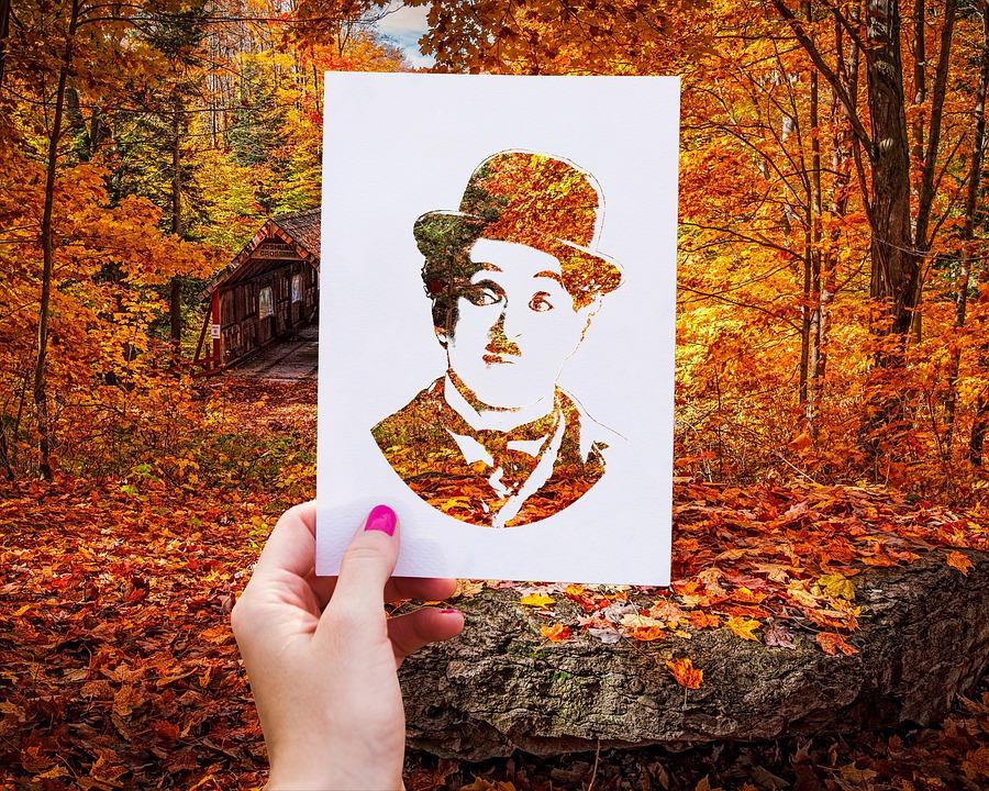 fall-3076337_960_720