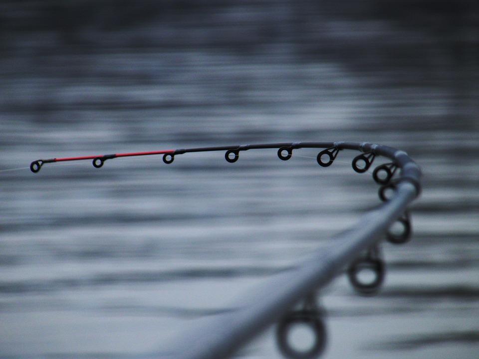 fishing-602895_960_720