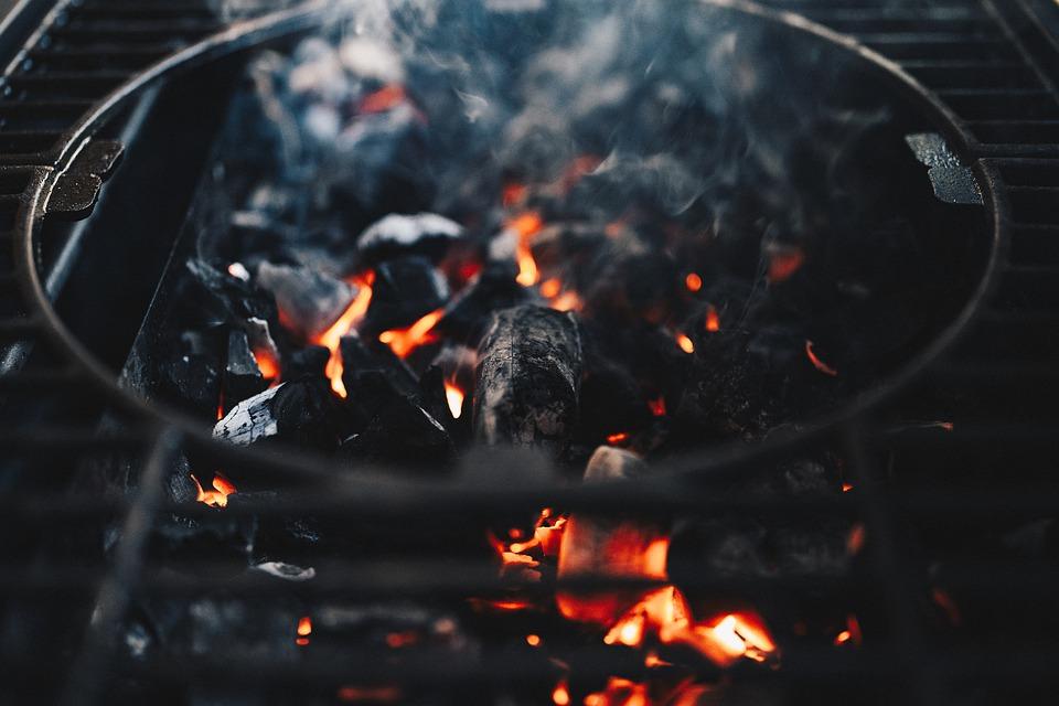 Priče sa roštilja – policajci i lopovi